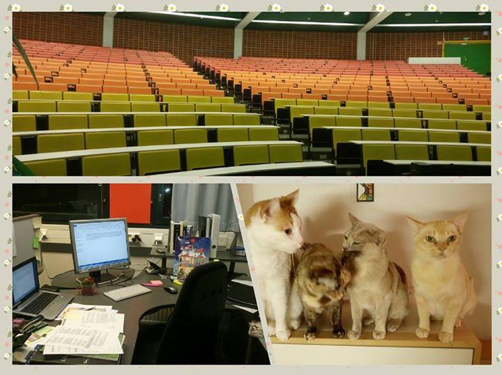 Oulu Business School: Last thr...