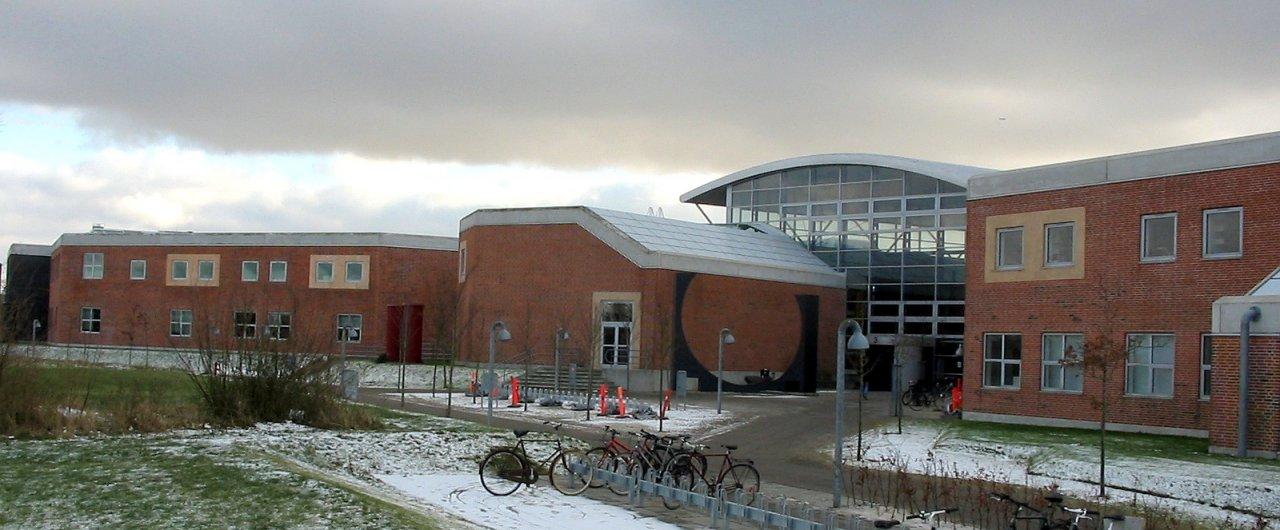 Petri Ahokangas nominated as an Adjunct Professor of Aalborg University