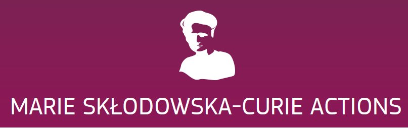 Marie Skłodowska-Curie researchers to address legitimation of newness and its impact