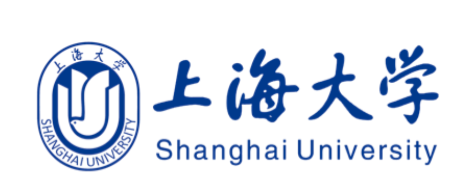 Collaboration with the Shanghai University proceeding